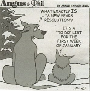 new years resolution definition
